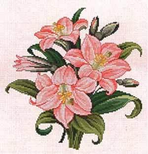 Amaryllis bouquet de ellen maurer stroh grilles point de for Amaryllis en bouquet